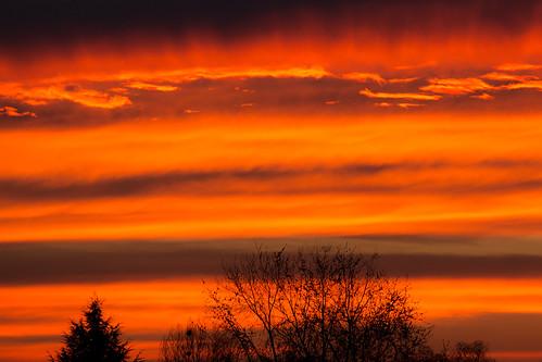 light sunset shadow sky orange tree clouds canon fire eos lumière ciel nuages arbre feu coucherdesoleil 70d sériel llense ef70300mmf456lisusm