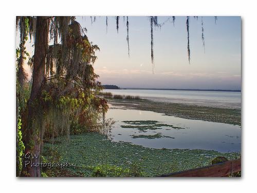 lake water sunrise canon landscape florida lakemonroe manfrotto centralflorida deltona volusiacounty canon7d deltonaflorida gwphotography canon28mmf18efusm