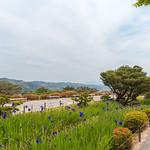 初夏の兼六園 / Kanazawa Kenrokuen