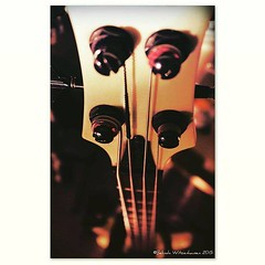 Bass Guitar II