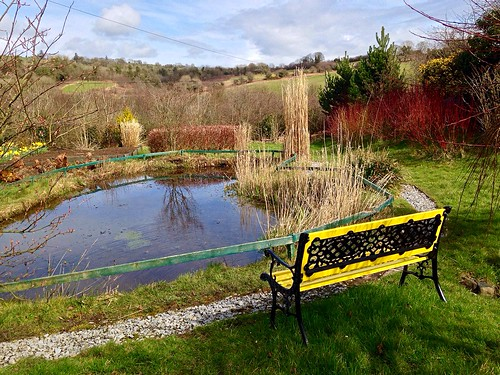 fence bench hbm pond garden view countryside reflection newmarket cork ireland irish iphone5 water spring 2016onephotoeachday