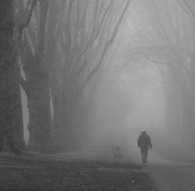 Fog In The Park_06