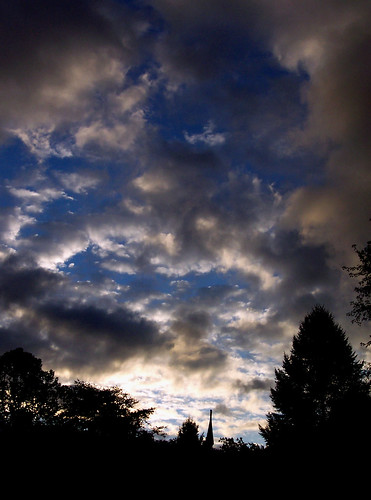 morning blue trees light shadow wild sky white black color tree nature clouds sunrise dark landscape woods pa sillouette dryflydrifting