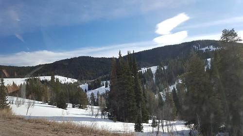 road bear park city trip winter lake snow cold nature utah national mormon logan brigham lds