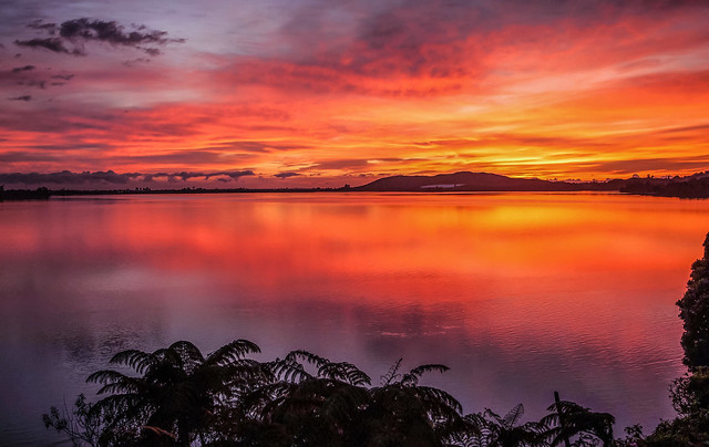 Rangataua Bay Sunrise