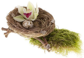 Orchid Nest — Photo Courtesy David Kesler, Floral Design Institute, Inc. | by Flower Factor