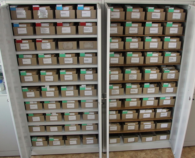 The metal cupboard holds 80 trays and about 3 thousand specimen envelopes totally.
