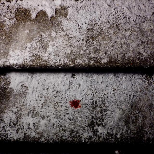 Schnee, Blut