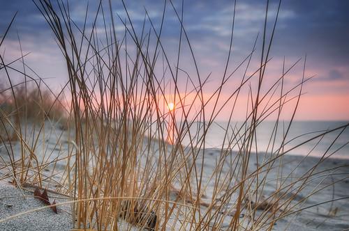 sky sun lake ontario beach grass clouds sunrise sand frenchmans