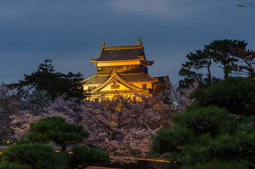 travel sunset building castle japan architecture landscape atardecer japanese arquitectura dusk paisaje landmark viajes bluehour japon castillo matsue picoftheday castillomatsue