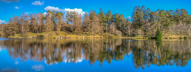 Tarn Hows reflections 2
