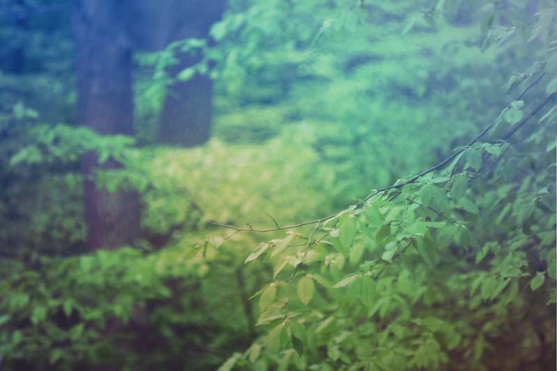 blur-dreamy-texture-texturepalace-69