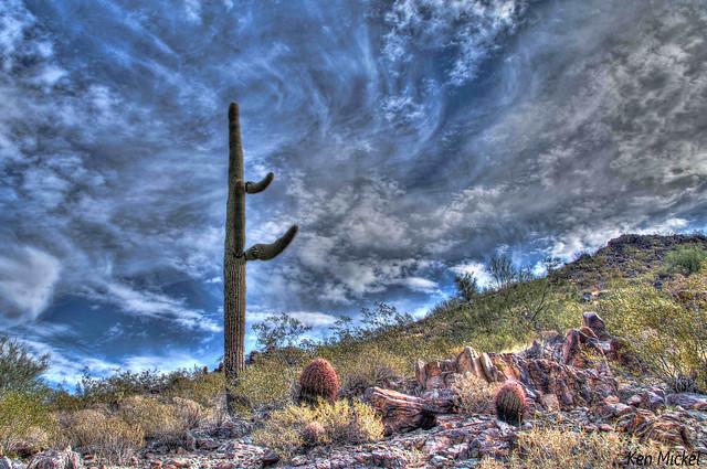 Skyline Regional Park, Buckeye Arizona