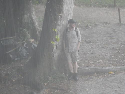 Palenque - Ger in de regen