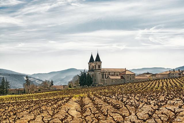 Régnié-Durette, Beaujolais
