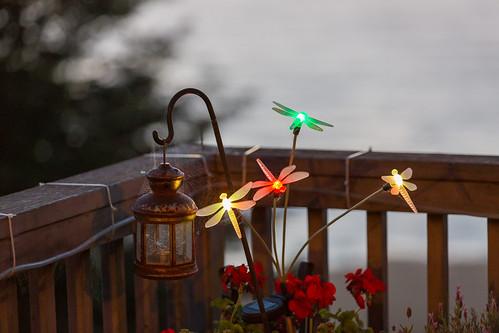 themove thelastnight dragonlights westportcalifornia denavencalifornia