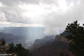 Grand Canyon North Rim_feistyharriet_October 2015 (4) | by FeistyHarriet