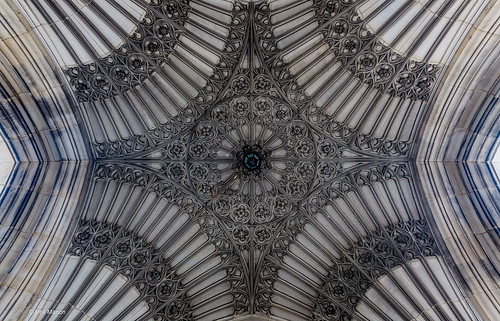 Ceiling at Hart House's World War veteran memorial - Toronto | by Phil Marion