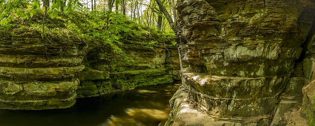 Pewitts Nest Panorama