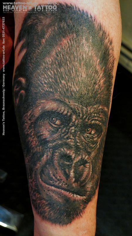 Gorilla Tattoo Heavens Tattoo Braunschweig Stefan