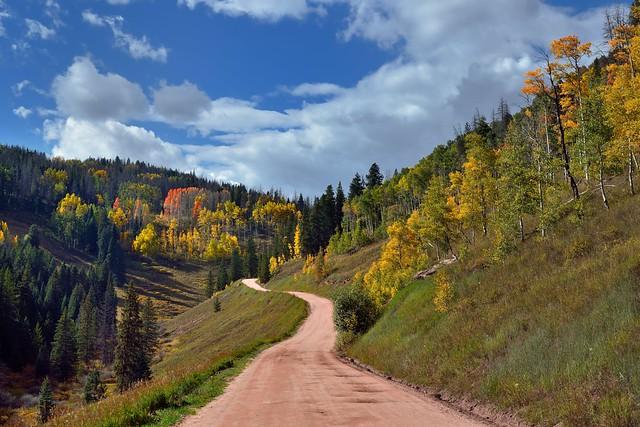 A Drive on FSR 700 (Colorado Autumn)