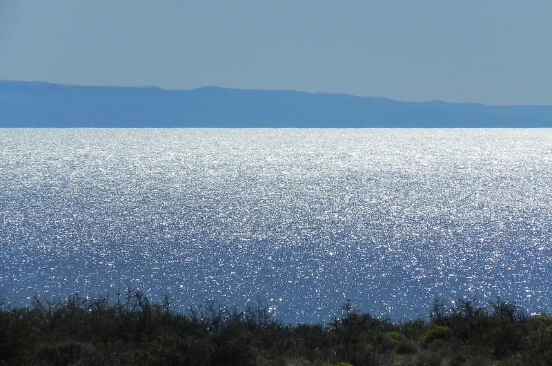 Laguna Nimez - El Calafate