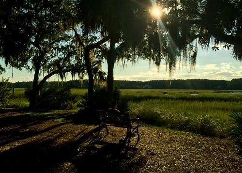 trees sunset sunrise southcarolina sunsets atlanticocean adamhall huntingisland hiltonheadisland trackhead trackheadstudios trackheadxxx