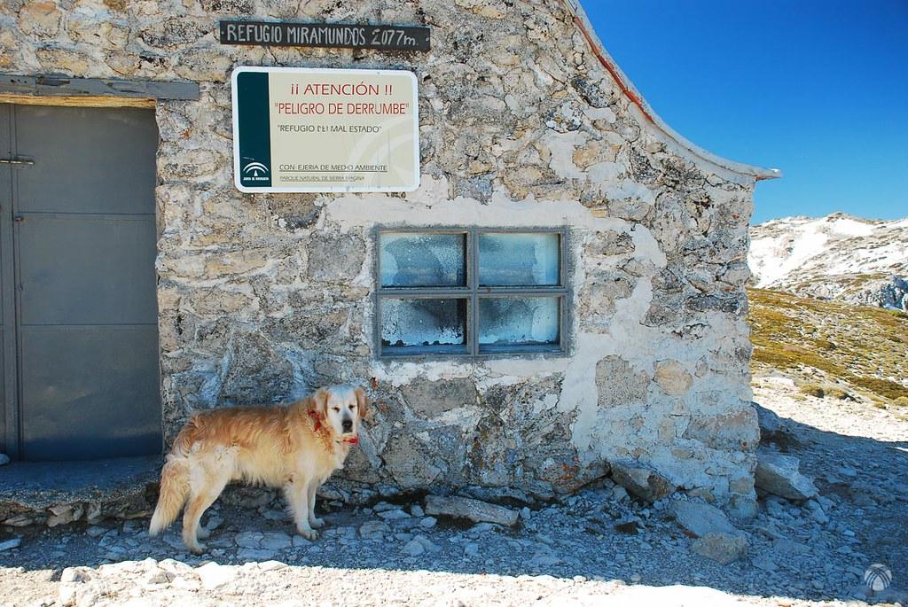 Refugio Miramundos