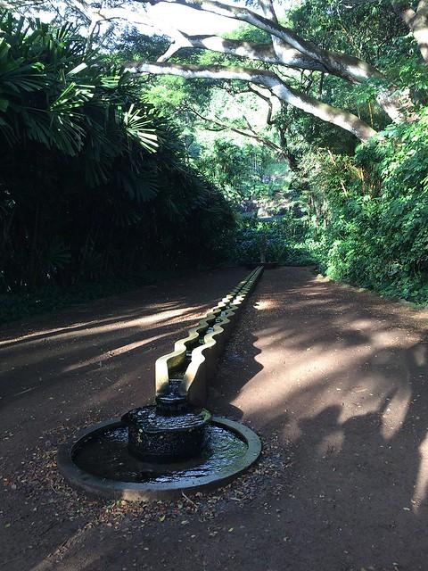 Fountain at Allerton
