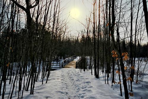 bridge winter sun snow sunshine forest trail