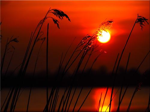 sunset water geotagged deutschland wasser sonnenuntergang deu schleswigholstein scharbeutz pönitzamsee geo:lat=5403159958 geo:lon=1070232701