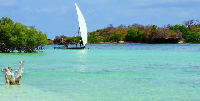 Real Sailing (Mafia Islands)
