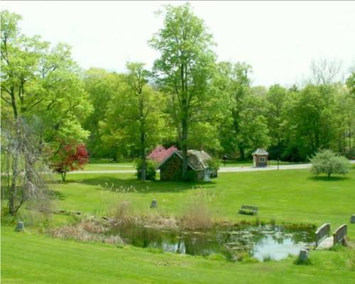 Spring Ringwood