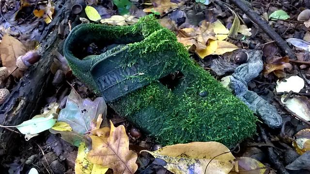 Una scarpa