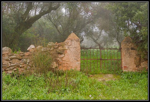 Puerta sin camino_IGP0023