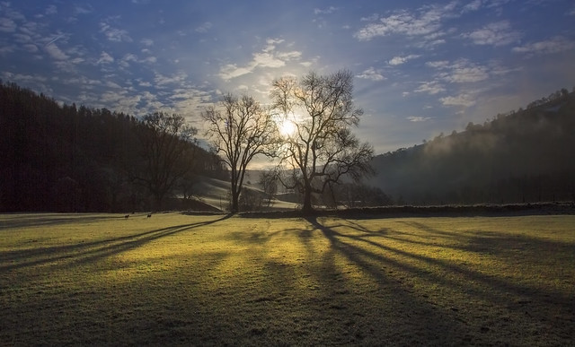 Bright Frosty Morning
