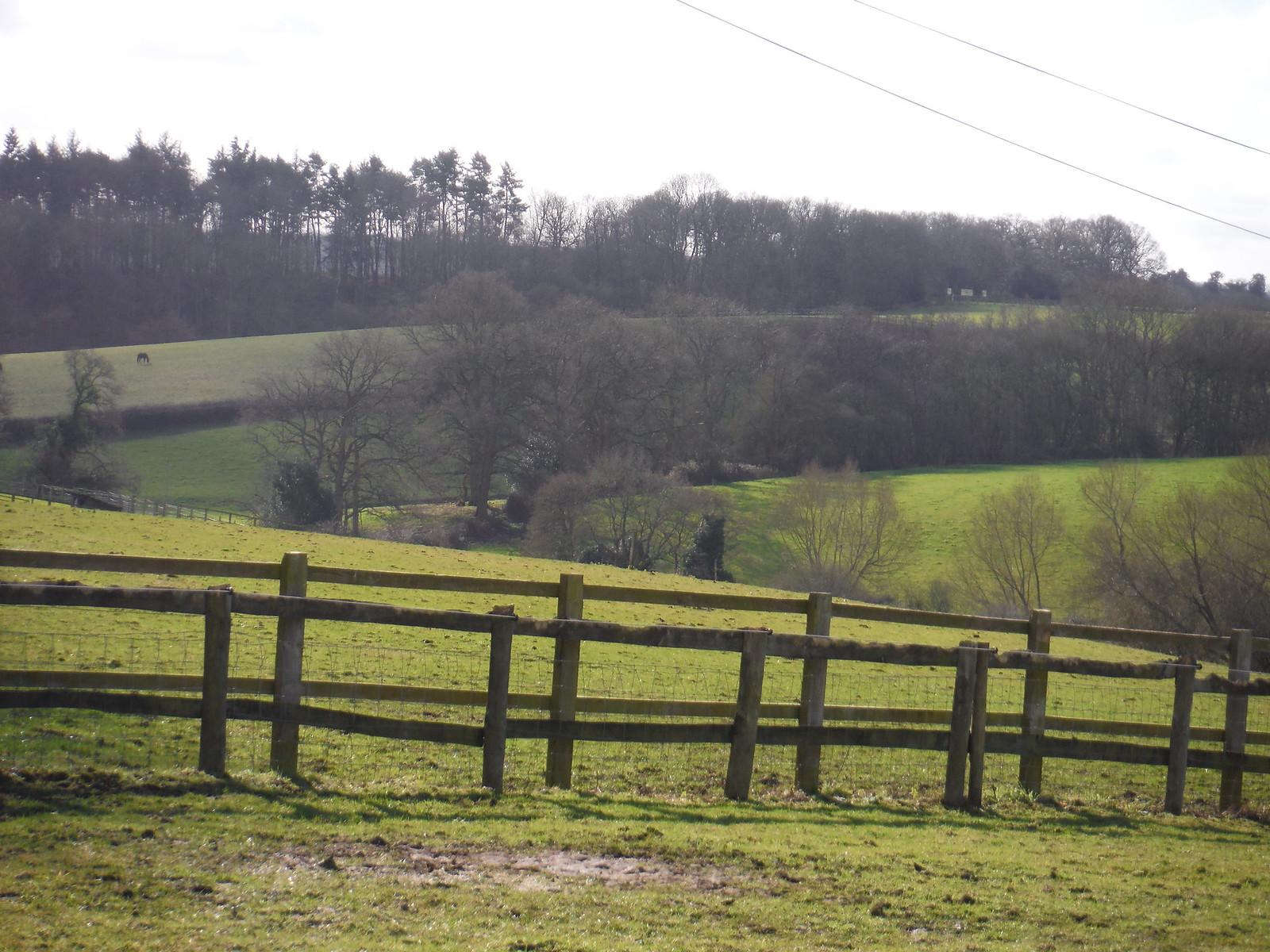 Scene near Oakwood Farm, Beenham SWC Walk 117 Aldermaston to Woolhampton (via Stanford Dingley)