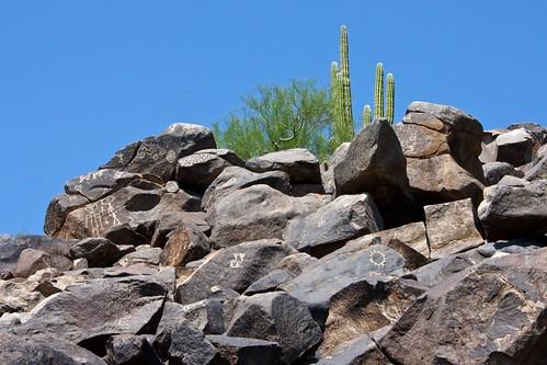 saguaro cactus caborca sonora mexico canonefs1855mmf3556is mountains petroglyphs canoneosrebelxs
