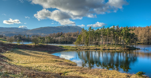 Tarn Hows reflections 3