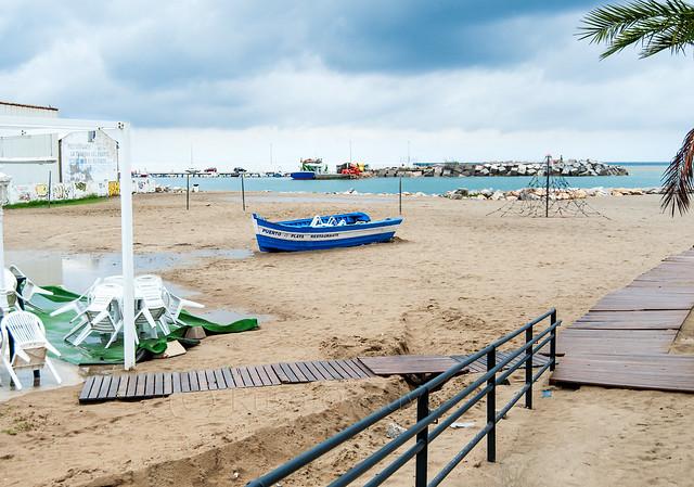 Forlorn on the Beach