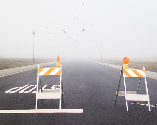 street fog mystery empty vultures roadclosed 2016 366