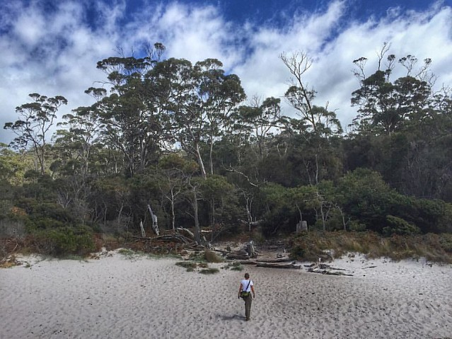 Nature puts us in our place. The beach at Wineglass Bay, east coast Tasmania. #Australia