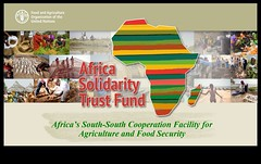 Africa Solidarity Trust Fund