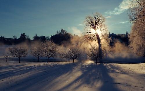 winter snow fog crepuscularrays tg4 originalworks thiopheneguy olympustg4 olympusstylustg4 olympustoughtg4