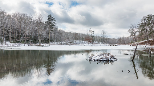 winter snow landscape virginia us unitedstates newport pandapaspond