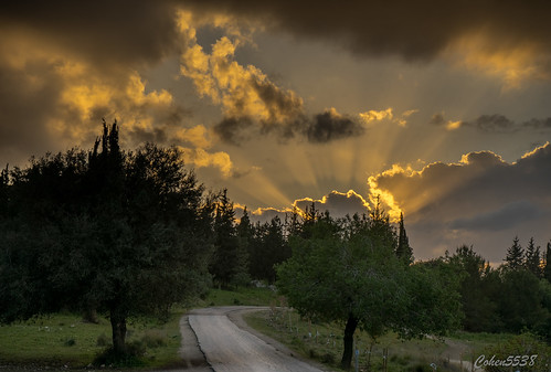 park sunset canada dawn israel twilight outdoor sony ישראל a7 ayalon latrun פארק שקיעה לטרון קנדה איילון 55385538 cohen5538 ayyalon