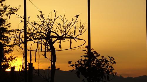 αιγιο αχαια αιγιαλεια πελοποννησοσ ελλαδα 169 σιλουετεσ ουρανοσ ευρωπη δυσηηλιου aigio achaia peloponnisos peloponnese peloponisos sonydscwx500 sunset silhouette greece europe psp