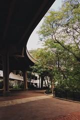Urban spaces: under the Brooklyn bridge.