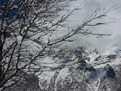 Monti ventosi