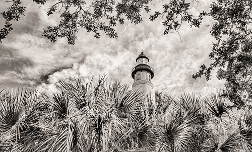 blackandwhite lighthouse tree florida ponceinlet canonef1740mmf4l canon5dmkii samuelsantiago topazbweffects sammysantiago